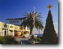 Stock photo. Caption: Christmas tree and palm Cannery Row Shops  along Monterey Bay Monterey, California -- time american flag flags trees county peninsula store stores shop winter decorated decorations holidays holiday season united states america tourist travel shopping destination destinations holiday
