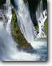 Stock photo. Caption: Burney Falls, Hat Creek McArthur Burney Falls State Park Shasta County Cascade Range, California -- Keywords: waterfall waterfalls  parks creek creeks united states america ranges  tourist travel destination destinations attraction attractions springs white water flowing  plunging interlude power grace powerful strong strength spring