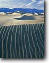 Stock photo. Caption: Mesquite Flat Dunes  Death Valley National Park Mojave Desert California -- mohave sand dune ripple ripples mountains deserts parks winter   parabolic wind erosion landscape landscapes united states america tourist travel destination destinations soft sandy clean patterns pattern desert freedom smooth