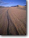 Stock photo. Caption: Ibex Dunes Death Valley Wilderness Death Valley National Park Mojave Desert, California -- united states america deserts sand dune ripple ripples wavy sands drought wind blown untracked trackless mohave transitory shifting rippled patterns pattern areas background backgrounds rippled remote sunny clear