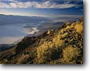 Stock photo. Caption: Death Valley from Dantes View   in the Amargosa Range Death Valley National Park Mojave Desert, California -- united states america landscape landscapes clear scenic scenics scene parks deserts attraction attractions destination mohave destinations  landmark landmarks tourist travel family views vistas vista distance valleys vacation spring