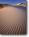 Stock photo. Caption: Kelso Dunes East Mojave National Scenic Area Mojave Desert San Bernardino County, California -- united states america deserts sand dune ripple ripples wavy sands drought wind blown untracked trackless mohave transitory shifting rippled patterns pattern parabolic areas background backgrounds rippled