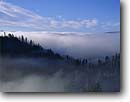 Stock photo. Caption: Advection fog in Corral Creek Valley   from Corral Creek Road Trinity National Forest Trinity County ,  California -- trees tree forest winter forests  united states america cold  unusual weather phenomenon fogs foggy