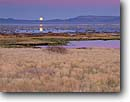 Stock photo. Caption: Moonrise in autumn Mono Lake Tufa State Reserve Mono Basin National Forest Scenic    Area, Great Basin,  California -- united states america quiet landscape landscapes moons rising moon lakes reflection reflections Range sierras grassland wetland wetlands reserves fall