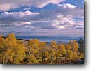 Stock photo. Caption: Aspens and Mono Lake Mono Basin National Forest Scenic    Area, Inyo National Forest Great Basin,  California -- united states america landscape landscapes lakes  Range sierras reserves aspen trees tree forests around cloud cloudy clouds stormy autumn fall