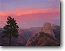 Stock photo. Caption: Half Dome from Glacier Point Yosemite National Park Sierra Nevada, California -- united states america glaciated granite sunset summer tree trees parks domes mountain mountains america world heritage site sites sunsets landscape landscapes tourist travel destination destinations sierras family vacation high country glaciated granite