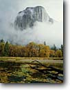 Stock photo. Caption: Merced River & El Capitan Yosemite Valley Yosemite National Park Sierra Nevada, California -- fall autumn tree trees color colors granite domes glaciated glacial valleys parks world heritage site sites united states america landscape landscapes pristine tourist attraction attractions spiritual storms stormy clouds cloudy scenics scenic landmarks