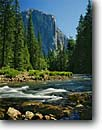 Stock photo. Caption: Merced River and El Capitan Yosemite Valley Yosemite National Park Sierra Nevada,  California --   rivers granite dome domes summer parks world heritage site sites mountains united states america landscape landscapes pristine tourist destination destinations rapid rapids crystal clear pure purity sheer face faces  massive balance