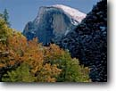 Stock photo. Caption: Half Dome   from Yosemite Valley Yosemite National Park Sierra Nevada, California -- fall autumn tree trees color granite domes glaciated glacial valleys parks world heritage site sites united states america landscape landscapes pristine tourist attraction attractions spiritual landmark landmarks famous views view sunny clear skies scenic