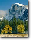 Stock photo. Caption: Half Dome from Stoneman Meadow Yosemite Valley Yosemite National Park Sierra Nevada,  California -- fall autumn tree trees color granite domes glaciated glacial valleys parks world heritage site sites landscape landscapes pristine tourist attraction attractions spiritual snow snowfall meadows landmark landmarks famous views view sunny view fresh covered