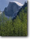 Stock photo. Caption: Black cottonwoods and Half Dome Yosemite Valley Yosemite National Park Sierra Nevada,  California -- granite domes clouds parks mountains inspiration vacation travel tourist destination destinations rock face rockface united states sunny world heritage site sites landscapes landscape glacially carved sheer faces climbing sierras icon icons snow clear