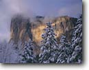 Stock photo. Caption: El Capitan Yosemite Valley Yosemite National Park Sierra Nevada,  California -- united states america parks world heritage site sites sierras vista vistas views tourist destination destinations family vacation dome domes El capitan half winter snowy snow famous landmark landmarks landscape landscapes glacially carved valleys