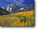 Stock photo. Caption: Aspens and Maroon Bells Maroon Creek Canyon Elk Mountains White River National Forest Rocky Mountains,  Colorado -- aspen fall peak peaks autumn rockies snow capped landscape landscapes dramatic majestic mountain color colors forests fourteener fourteeners highcountry arete geology geologic spectacular breathtaking destination sunny blue skies clear dramatic soaring