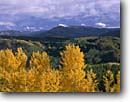 Stock photo. Caption: Aspen and Little Marvin Peaks   from Ripple Creek Pass White River National Forest Rocky Mountains,  Colorado -- aspens fall peak peaks autumn rockies united states america landscape landscapes dramatic majestic mountain color colors forests tree trees deciduous rockies flattops flat tops cloudy distance vista scenic scenics wildernesses wilderness foliage