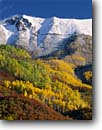 Stock photo. Caption: Aspens, gambel oaks and Iron Mountain   from Deep Creek Mesa San Juan Mountains Rocky Mountains, Colorado -- aspen fall peak peaks autumn rocky  united states america peaks snow capped snowy landscape landscapes dramatic majestic mountain balance balanced harmony design designs artistic nature rockies blue skies sunny clear colour foliage color dramatic scenics