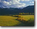 Stock photo. Caption: Sneffels Range   from the Uncompahgre River Valley Uncompahgre National Forest San Juan Mountains Rocky Mountains,  Colorado -- america rural landscape landscapes ranch ranching ranchland fall autumn pasture pastureland bountiful strength pastoral tranquil tranquility pastures fence fences rangeland rangelands tranquil peaceful snow fenceline winding fresh snowfall scenic scenics