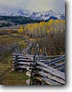 Stock photo. Caption: Sneffels Range from Dallas Divide San Juan Mountains, Colorado -- united states america pole fences fence aspens trees forest rural fall autumn snow capped peaks cold countryside country rocky mountain cattle ranch ranches rural rustic ranching fenceline fencelines winding grazing land pasureland fenced western west