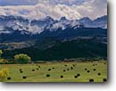 Stock photo. Caption: Rolled hay in Dallas Creek Valley   and the Sneffels Range San Juan Mountains Rocky Mountains,  Colorado -- united states america rural landscape landscapes ranch ranching ranchland fall autumn pasture pastureland bountiful strength pastoral pastures mountain snow capped peak peaks field fields bale bales baled ranchlands pasturelands agriculture harvest time