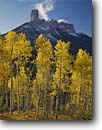 Stock photo. Caption: Aspens, Chimney Rock, and Courthouse Mountain, Owl Creek Pass Uncompahgre National Forest San Juan Mountains, Colorado -- Rocky Rockies aspen fall peak peaks united states america landscape landscapes dramatic majestic forests tree trees spruce spruces arete spire spires tower towering eroded erosion colours colour snow snowfall color blue skies clear sunny crisp fresh