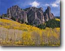 Stock photo. Caption: Aspens and ryolite pinnacles Cimarron River Valley Uncompahgre National Forest San Juan Mountains Rocky Mountains, Colorado --  Rockies aspen fall peak peaks united states america landscape landscapes dramatic majestic mountain forests tree trees spruce spruces arete spire spires tower towering eroded erosion abstract color colors colours colour