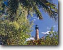 Stock photo. Caption: Coconut palms and Cape Florida Light Key Biscayne Miami-Dade County Florida -- tourist destination destinations attraction attractions historic historical sunny blue buildings building lighthouses lighthouse lights maritime coastal american station tree palm tropical ocean coastline coastlines landscapes scenic skies safe tower