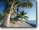 Stock photo. Caption: Coconut palms and Cape Florida Light Key Biscayne Miami-Dade County Florida -- tourist scenic scenics attraction attractions historic historical sunny blue buildings building lighthouses light maritime coastal station tree palm tropical beach beaches ocean coastline coastlines clear seashore seashores landscape landscapes