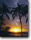 Stock photo. Caption: Coconut palms and Molokini at sunset Makena Island of Maui Hawaii -- beach tropical destinations destination islands pacific vacation vacations travel tourist seascape seascapes beaches sand sandy sunsets hawaiian paradise palm tree trees tropical tropics scenics scenic eternal exotic soft solitude