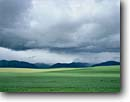 Stock photo. Caption: Spring storm over Snake River Range   and grainfields on Antelope Flat Snake River Valley Rocky Mountains,  Idaho -- Keywords: mountain landscape landscapes scenic scenics rivers views view vista vistas evolution patience western west rockies cloudy clouds dramatic light green grain fields waves stormy snowfall fresh simple pastoral agriculture crop crops ranges