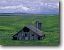 Stock photo. Caption: Old barn north of Lewiston Highway 95 Nez Perce County, Idaho -- united states america green wheat fields farm agriculture country spring afternoon clouds pacific northwest barns rural family farms summer abandoned pastoral americana durable time green cloudy wooden silo silos field building buildings landscapes scenic