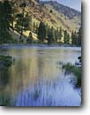 Stock photo. Caption: Middle Fork Salmon River,  Frank Church River of No Return Wilderness Challis and Boise National Forest Rocky Mountains, Idaho -- Keywords: united states america tranquil forests mountains calm majestic landscape landscapes mountain rocky rockies national subalpine summer areas wildernesses highcountry backcountry backpacking backpack rivers