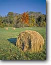 Stock photo. Caption: Rolled hay Dearborn County Indiana -- landscape landscapes scenics scenic blue skies clear agriculture growing growth ranching ranchland ranch industry progress harvest harvesting  bales fall autumn field fields single straw sunny united states america