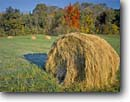 Stock photo. Caption: Rolled hay Dearborn County Indiana -- landscape landscapes scenics scenic blue skies clear agriculture growing growth ranching ranchland ranch industry progress harvest harvesting bales fall autumn field fields straw sunny united states america