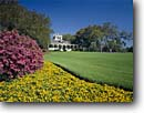 Stock photo. Caption: Rip Van Winkle Gardens Joseph Jefferson Home Live Oak Gardens, Jefferson Island Iberia Parish, Louisiana -- tourist destination destinations attraction attractions historic historical sunny blue buildings building coastal landscape landscapes gardens formal national register places homes plantation plantations house houses preserved blooming summer oaks