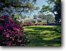 Stock photo. Caption: Joseph Jefferson Home Live Oak Gardens Jefferson Island Iberia Parish, Louisiana -- tourist destination destinations attraction attractions historic historical sunny blue buildings building coastal landscape landscapes gardens formal national register places homes plantation plantations house houses preserved blooming summer oaks