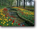 Stock photo. Caption: Main Garden Hodges Gardens Many Louisiana -- formal public flowers walkway flower summer manicured landscaping gardening landscape landscapes tulip dogwood spring serene rest cultivated luxurious travel excellence lined stream creek beautiful color colors sweet water features feature attractions