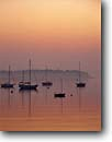 Stock photo. Caption: Sailboats at sunrise Southwest Harbor Mount Desert Island Maine, New England -- seascape seascapes united states america east boats sail bay protected bay bays harbor harbors orange summer new england atlantic seaboard safe tranquil anchored sunrises harbours harbour peace resting reflection reflections sailing calm safe anchor