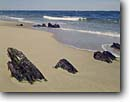 Stock photo. Caption: Remains of British frigate   HMS Somerset Cape Cod National Seashore Massachusetts -- seascape seascapes tourist destination destinations attraction attractions northern coast coastal coastline coastlines landscape landscapes scenic scenics ocean sunken ships ship historical historic seashores sandy beach beaches wreck wrecks civil