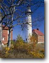 Stock photo. Caption: Yellow birch   and Au Sable Point Lighthouse Pictured Rocks National Lakeshore Upper Peninsula,  MIchigan -- lights station stations lighthouse lighhouses maple maples fall autumn tree trees northern midwest midwestern  beacon beacons direction guidance navigation america navigational birches landscape landscapes view through scenics scenic dramatic