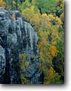 Stock photo. Caption: Cliff near Gunflint Lake Superior National Forest Cook County Minnesota -- united states america midwest great lakes cliffs fall color colour colours colors autumn foliage tree trees landscape landscapes