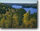 Stock photo. Caption: Birch and aspen,  Brule Lake Boundary Waters Canoe Area Superior National Forest Minnesota -- lakes united states america north woods landscape landscapes back country wildernesses wilderness  shoreline lakeshore fall autumn midwest midwestern tree trees