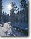 Stock photo. Caption: East Branch of Lester River Duluth Saint Louis County Minnesota -- united states america midwest midwestern snow scene winter rivers snowy sunburst sun flare cold crisp landscape landscapes sunny blue sky fresh clear skies north woods covered  animal track tracks