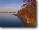 Stock photo. Caption: Mountain ash and Lake Superior  from Duluth Minnesota