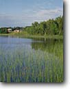Stock photo. Caption: Little Moose Lake Blacklock Nature Sanctuary Carlton County Minnesota -- hardwoods forests northern upper midwest united states america landscape landscapes forests lakes great region barn barns ranch farm farms lakes grasses pastoral agriculture building buildings