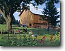Stock photo. Caption: Timber framed barn Mora Kanabec County Minnesota -- landscape landscapes scenic scenics scene barns building buildings sunny clear blue skies summer wooden pastoral rural heritage agriculture barns hollyhock hollyhocks sunbeam sunbeams sunburst tire swing swings