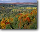 Stock photo. Caption: Mixed hardwood forest   from Oberg Mountain Superior National Forest Minnesota -- forests northern tree trees upper midwest midwestern great lakes region united states america forests forest forests fall color colour colours colors autumn second growth landscape landscapes