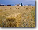 Stock photo. Caption: Ranch   near Bozeman Gallatin County Montana -- landscape landscapes scenic scenics scene barns building buildings summer wooden pastoral rural agriculture barns ranches ranchland ranching bales harvested harvesting haybales building buildings family farm values value hard working