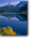Stock photo. Caption: Black cottonwoods & Wild Goose Island   in Saint Mary Lake  with Divide and Curly Bear Mountains Glacier National Park, Montana -- Rocky world heritage site sites fall autumn rockies peaks islands lakes mountain glacial carved parks  landscape landscapes tourist travel reflection reflections destination cottonwoods calm pristine tree trees sunny clear blue solitude fresh perfect