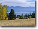 Stock photo. Caption: Red barn Flathead Lake Rocky Mountains Montana -- landscape landscapes scenic scenics scene barns building buildings sunny clear blue skies fall autumn wooden grasses pastoral rural agriculture   color colors colour colours mountain rockies