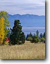 Stock photo. Caption: Red barn Flathead Lake Rocky Mountains Montana -- landscape landscapes scenic scenics scene barns building buildings sunny clear blue skies fall autumn wooden grasses pastoral rural agriculture color colors colour colours mountain rockies ranch ranching ranchland farming quiet peaceful bucolic