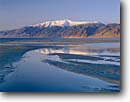 Stock photo. Caption: Mt. Grant   from north shore Walker Lake Great Basin Nevada -- united states america snow winter  lakes mount basin and range reflection reflections ephemeral oasis